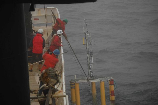 ASIS buoy recovery Picture