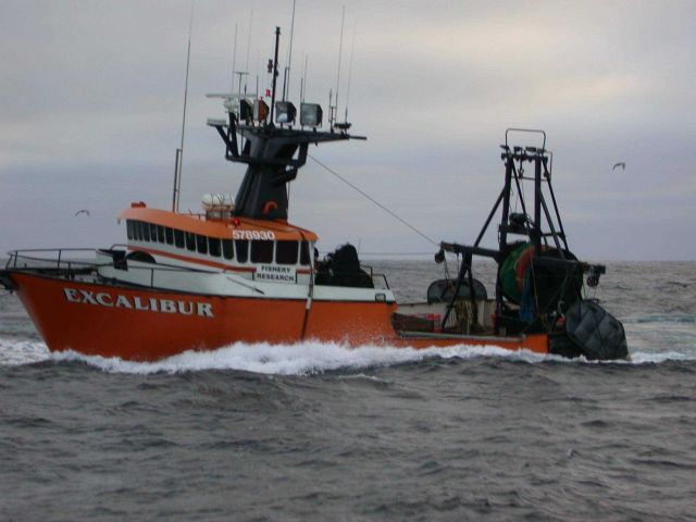 Chartered Fishing Vessel Excalibur underway while conducting research for West Coast Groundfish bottom trawl survey. Picture