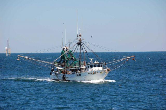 Gulf shrimp boat SUN STAR Picture