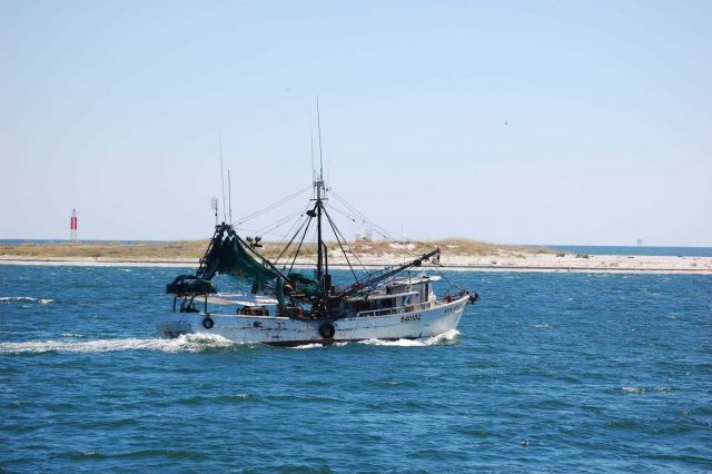 Gulf shrimp boat SUN STAR at entrance to Mobile Bay. Picture