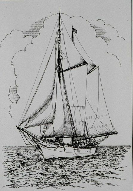 Coast and Geodetic Survey Schooner MATCHLESS Picture