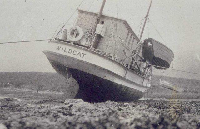 WILDCAT careened. Picture