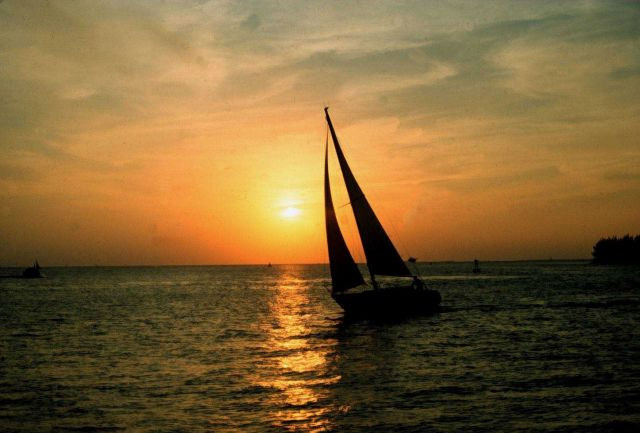 Sailing days sunset Picture