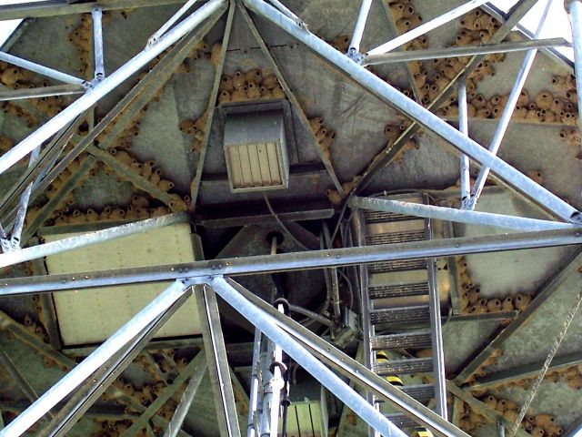 Bottom of the radome (part of pedestal structure) with many barn swallow nests. Picture