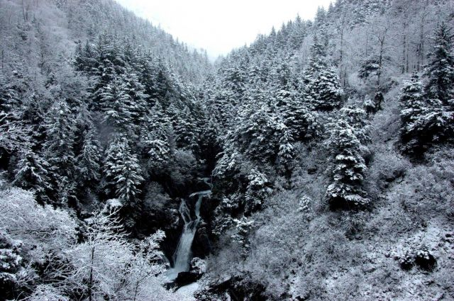 Snow, frost, and a merry waterfall cascading down a mountain valley. Picture