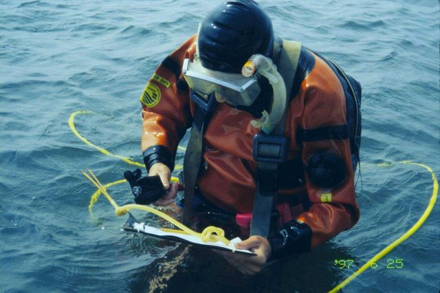 The fifth in a series of images showing NOAA scientists at the 1997 transplant site just before transplanting the eelgrass turf. Picture