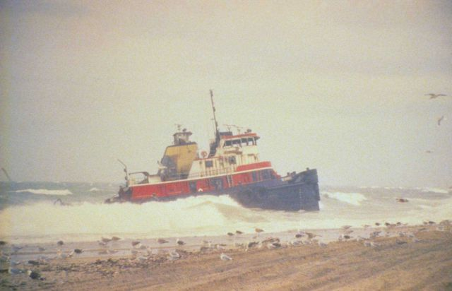 The tug, Scandia, grounded in a winter storm was pulling the North Cape The barge carried approximately 828,000 gallons of home heating when tug and b Picture