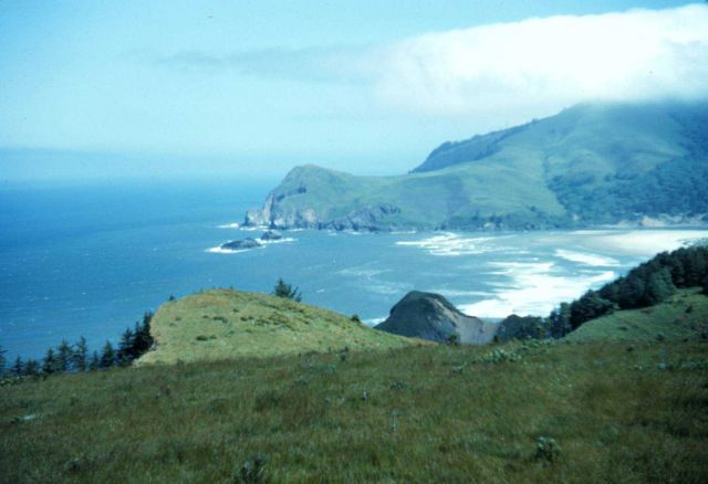 Headland at Salmon River Picture