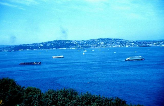 Ferry boats plying Puget Sound Picture