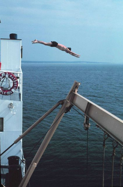 Swim call! Undaunted by Jaws movies, ALBATROSS IV crewman dives into waters off Menempsha Bight Picture
