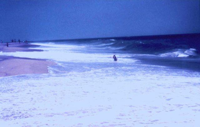 A Cape Cod beach scene. Picture