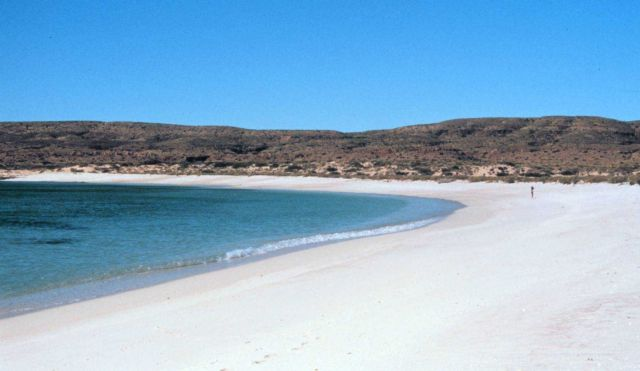 A VERY busy Northwest Cape beach with one person. Picture