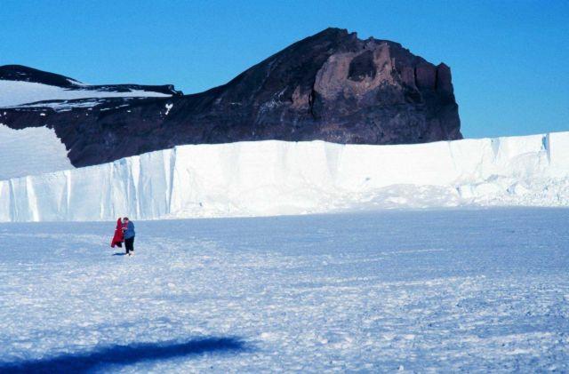 Emperor penguin colony at Cape Washington in the Ross Sea Picture
