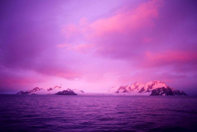 Elephant Island at sunrise. Picture