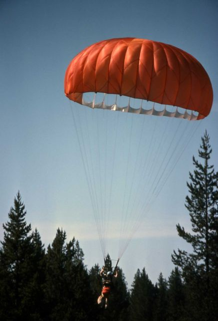 Smokejumper with equipment near West Yellowstone (practice jump) Picture
