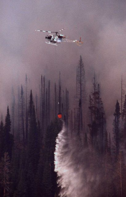Lama helicopter dropping water from bucket Picture