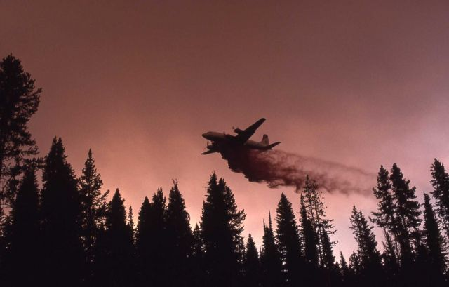 Bomber dropping liquid retardant Picture