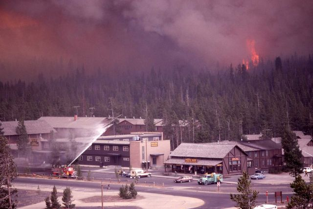 Dense smoke & Crown fire approaching Old Faithful Snow Lodge Picture