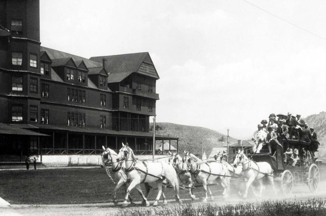 Six horse stagecoach at the Mammoth Hotel Picture