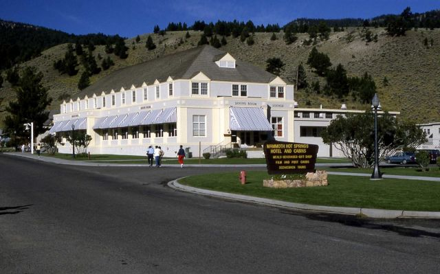 Mammoth Hot Springs restaurant Picture