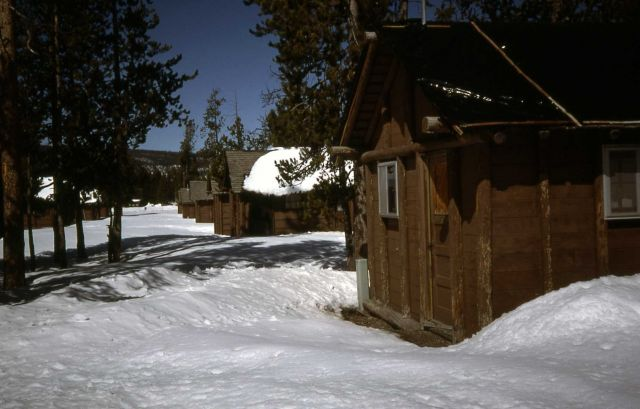 Cabins behind Old Faithful Snow Lodge in the winter Picture