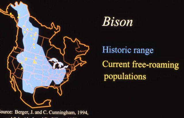 Bison historic/present range map Picture