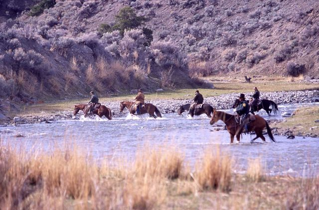 Wranglers crossing Gardner River at Chinese Garden - bison release Picture