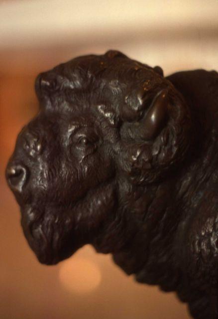 Bronze bison statue Picture