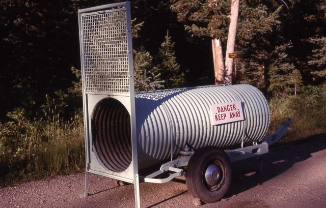 Culvert style grizzly bear trap Picture
