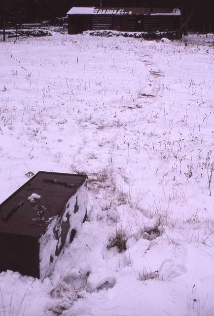 Food storage box taken from Slough Creek barn by a grizzly bear Picture
