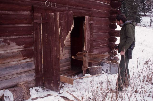 Slough Creek scout house broken into by a grizzly bear Picture