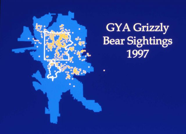 1997 grizzly bear sightings map Picture