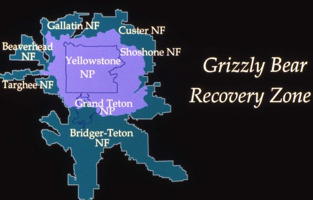 Grizzly bear recovery zone map Picture