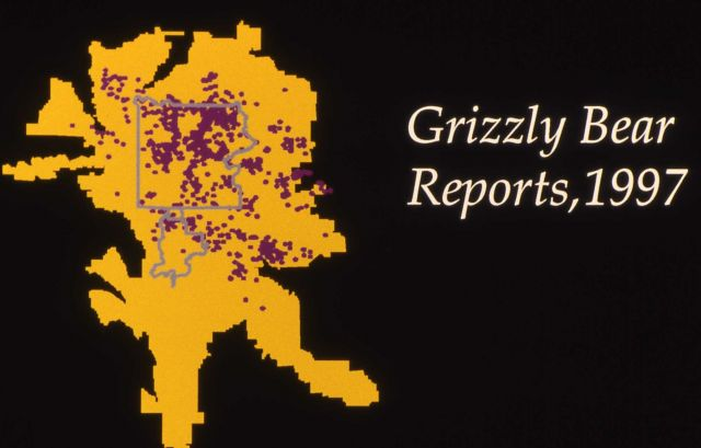 1997 grizzly bear reports map Picture