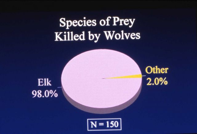 Species of prey killed by wolves - chart Picture