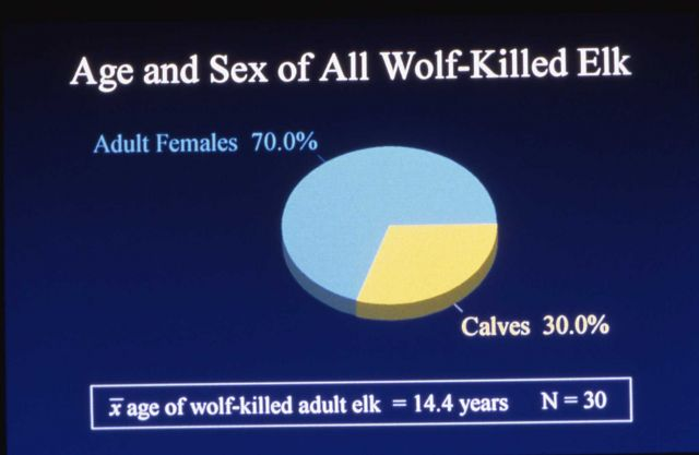 Age & sex of wolf killed elk - chart Picture