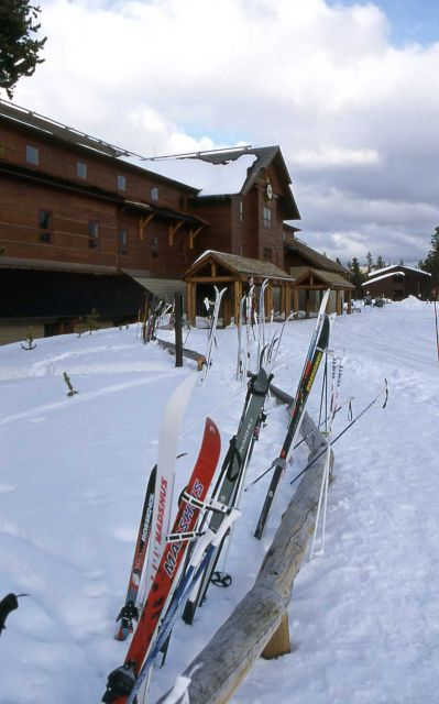 AmFac employee skis lined up at Old Faithful Snow Lodge Picture
