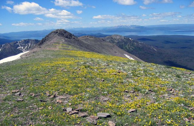 Summit of Avalanche Peak looking south - view of Yellowstone Lake & Grand Tetons Picture