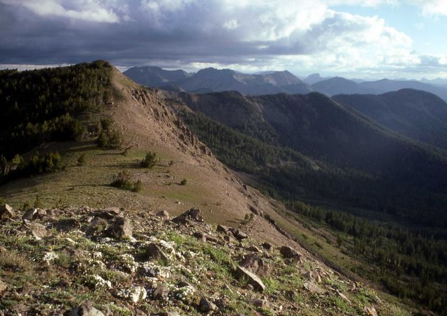 South of Top Notch looking North Picture