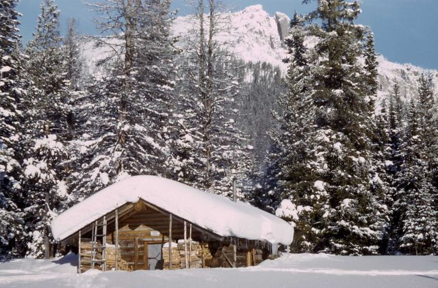 Fox Creek patrol cabin in the winter Picture