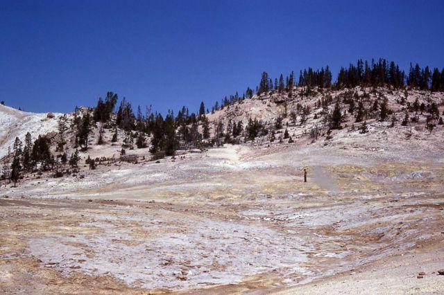 Sulfur Springs area - Mud Volcano area Picture