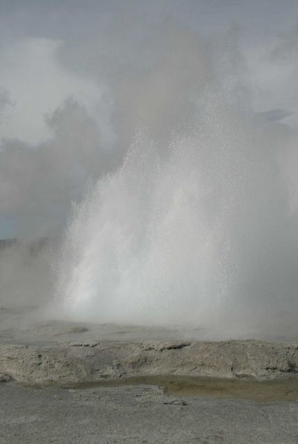 Fountain Geyser - Midway & Lower Geyser Basin Picture