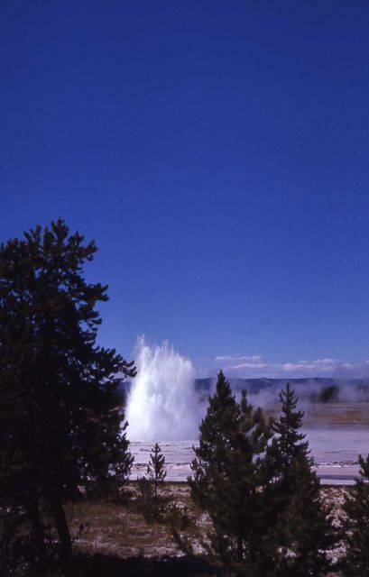 Great Fountain Geyser - Midway & Lower Geyser Basin Picture