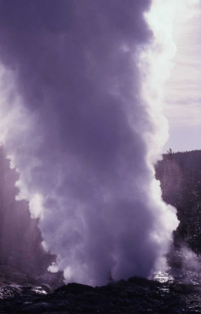 Steamboat Geyser in steam phase - Norris Geyser Basin Picture