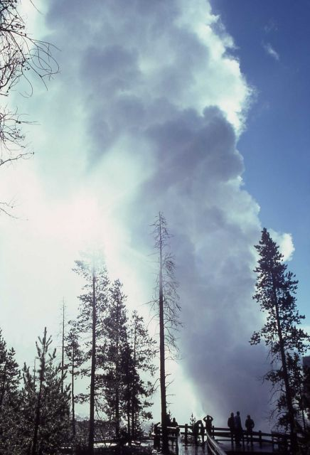 Steamboat Geyser erupting August 25, 1978 - Norris Geyser Basin Picture