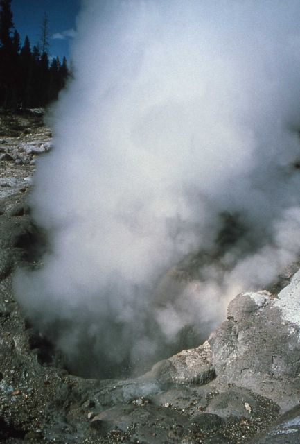 Close up of Steamboat Geysers north vent - Norris Geyser Basin Picture