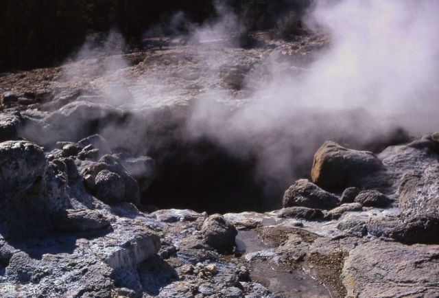 North vent of Steamboat Geyser - Norris Geyser Basin Picture