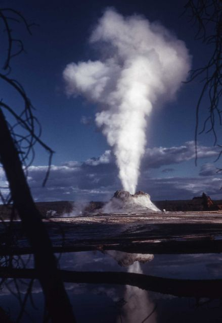 Castle Geyser with pool reflecting its eruption - Upper Geyser Basin Picture