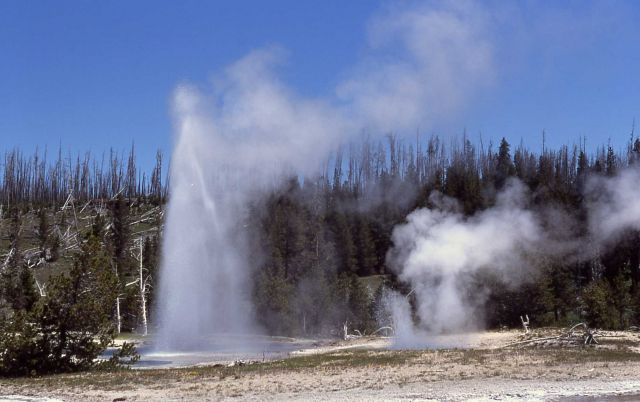 Grotto Fountain Geyser & South Grotto Geyser - Upper Geyser Basin Picture