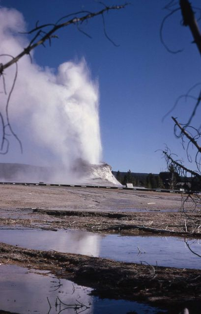 Castle Geyser - Upper Geyser Basin Picture